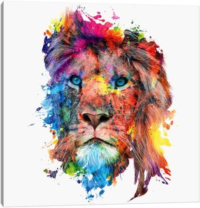 Lion Canvas Print #PEK50