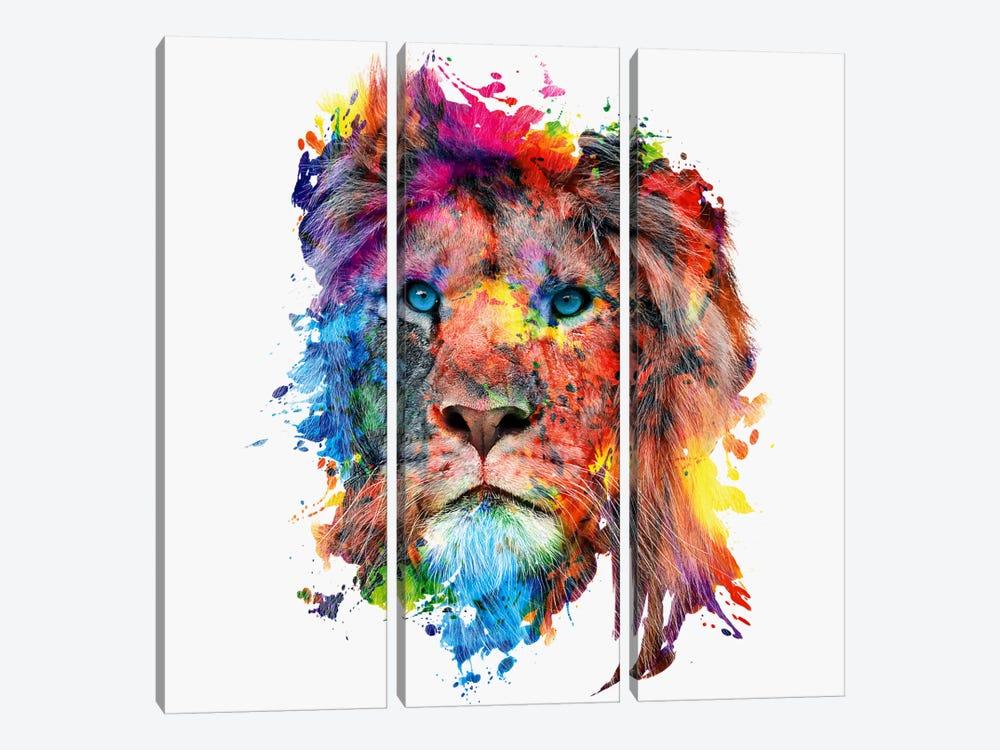 Lion by Riza Peker 3-piece Canvas Art