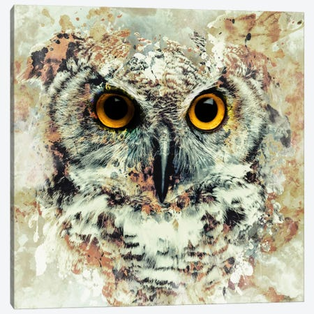 Owl II Canvas Print #PEK54} by Riza Peker Canvas Art