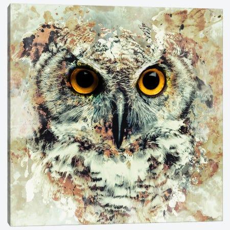 Owl II Canvas Print #PEK54} by Riza Peker Canvas Art