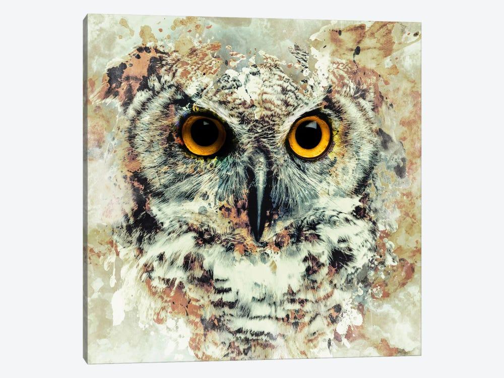 Owl II by Riza Peker 1-piece Canvas Artwork