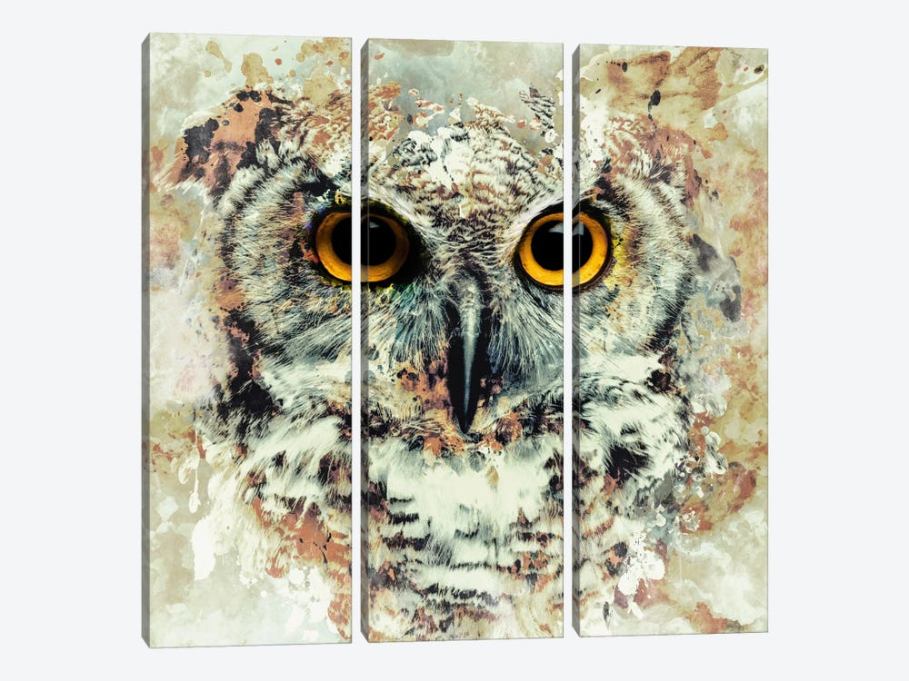 Owl II by Riza Peker 3-piece Canvas Artwork