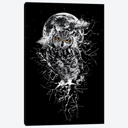 Owl In B&W Canvas Print #PEK55} by Riza Peker Canvas Wall Art
