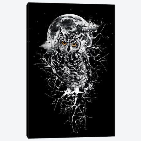 Owl In B&W Canvas Print #PEK55} by Riza Peker Canvas Wall Art