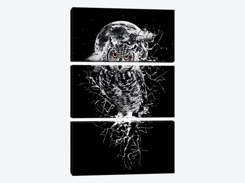 Owl In B&W by Riza Peker 3-piece Art Print