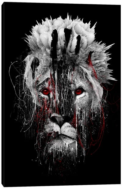Red-Eyed Lion Canvas Art Print