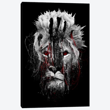 Red-Eyed Lion Canvas Print #PEK56} by Riza Peker Canvas Art