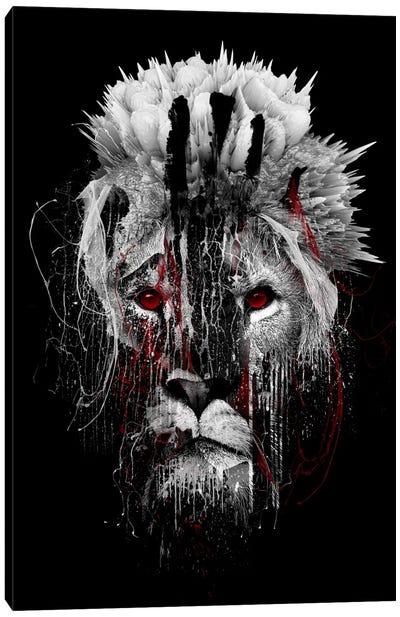 Red-Eyed Lion Canvas Print #PEK56