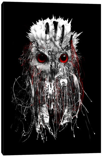 Red-Eyed Owl Canvas Art Print