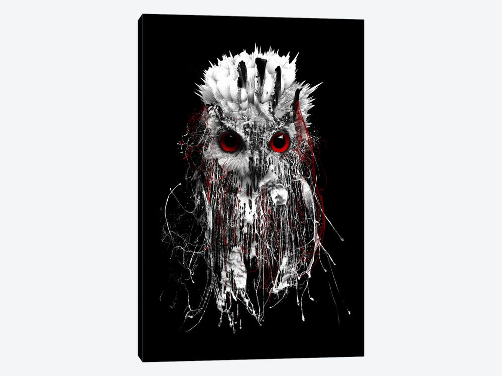 Red-Eyed Owl by Riza Peker 1-piece Canvas Print