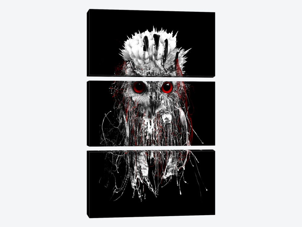 Red-Eyed Owl by Riza Peker 3-piece Canvas Art Print