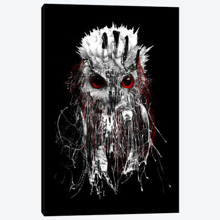 Red-Eyed Owl Canvas Print #PEK57} by Riza Peker Canvas Wall Art