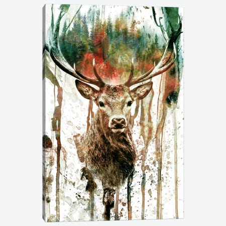 Deer I Canvas Print #PEK5} by Riza Peker Art Print