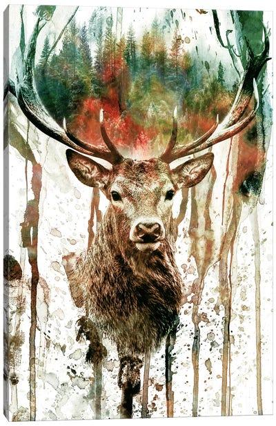 Deer I Canvas Art Print