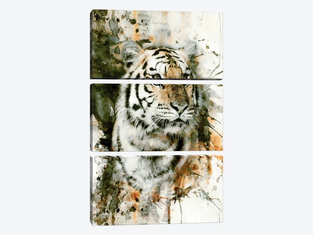 Tiger I by Riza Peker 3-piece Canvas Artwork