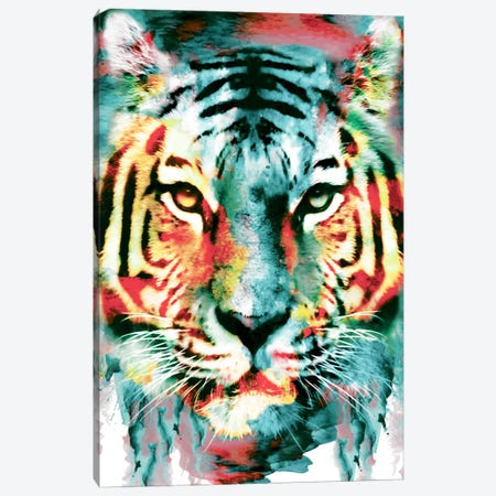 Tiger II Canvas Print #PEK64} by Riza Peker Canvas Art Print