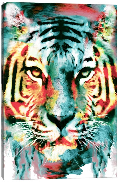 Tiger II Canvas Art Print