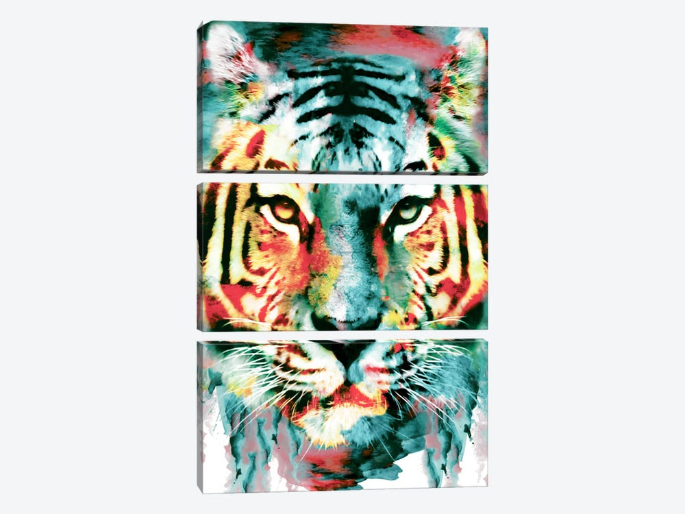 Tiger II by Riza Peker 3-piece Canvas Print