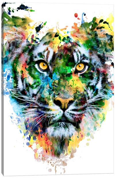 Tiger IV Canvas Art Print