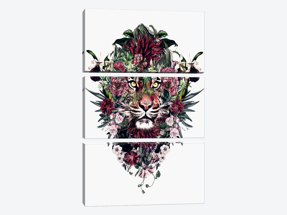 Tiger V by Riza Peker 3-piece Canvas Art