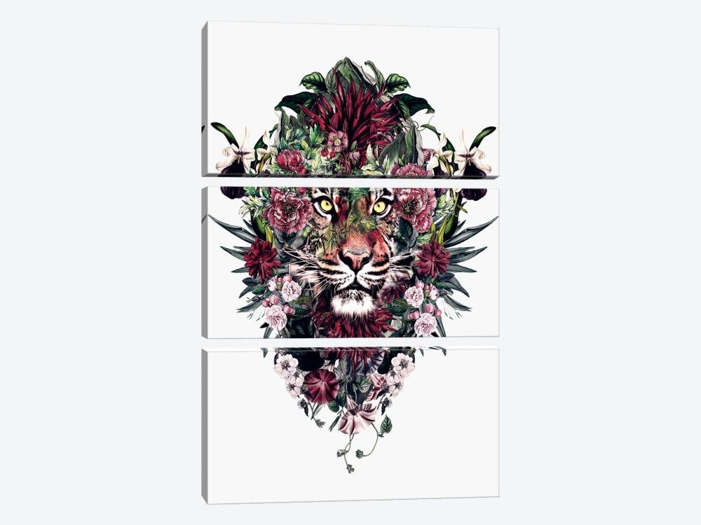 Tiger V by Riza Peker 3-piece Canvas Art