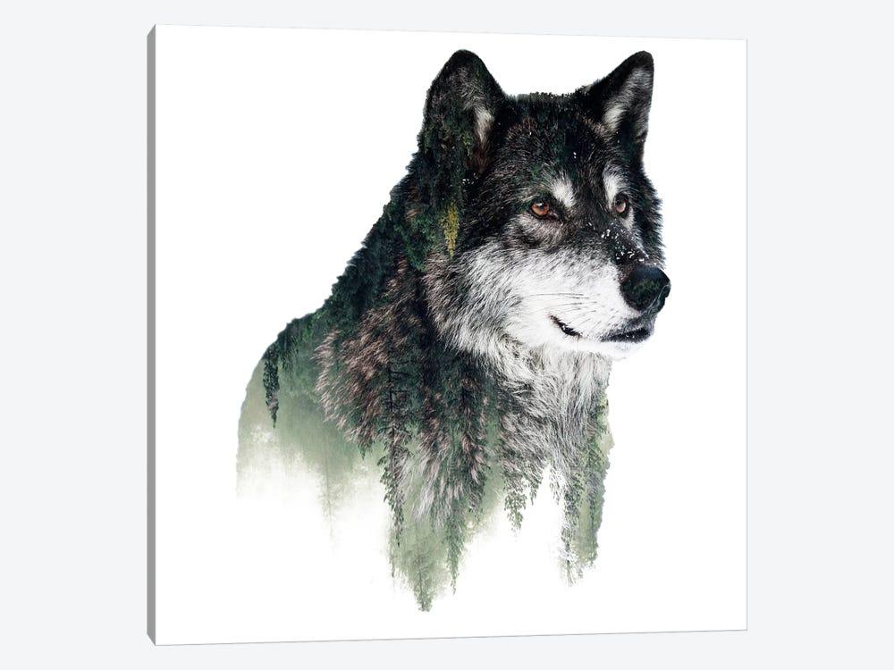 Wolf I by Riza Peker 1-piece Canvas Print