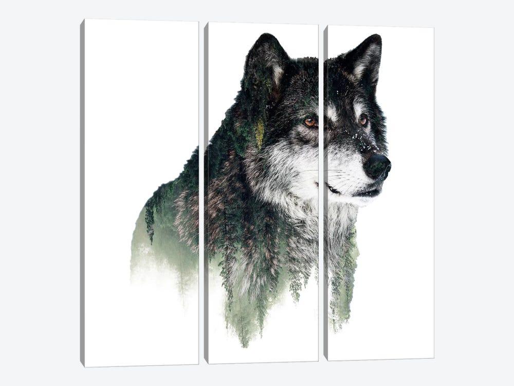Wolf I by Riza Peker 3-piece Canvas Art Print