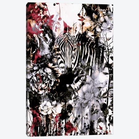 Zebra Canvas Print #PEK73} by Riza Peker Canvas Art Print