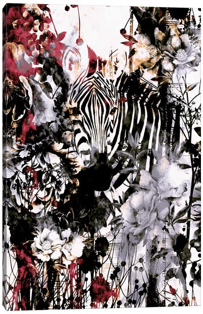Zebra Canvas Art Print