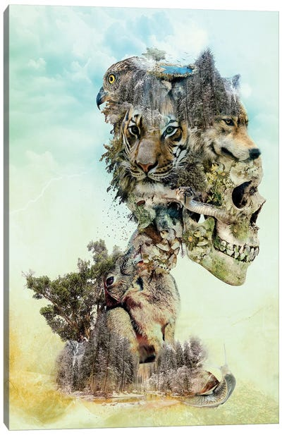 Nature Skull Canvas Art Print