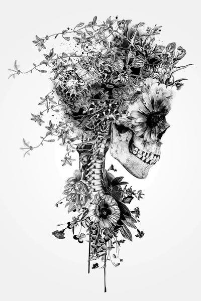 Skull B Amp W Canvas Art Print By Riza Peker Icanvas