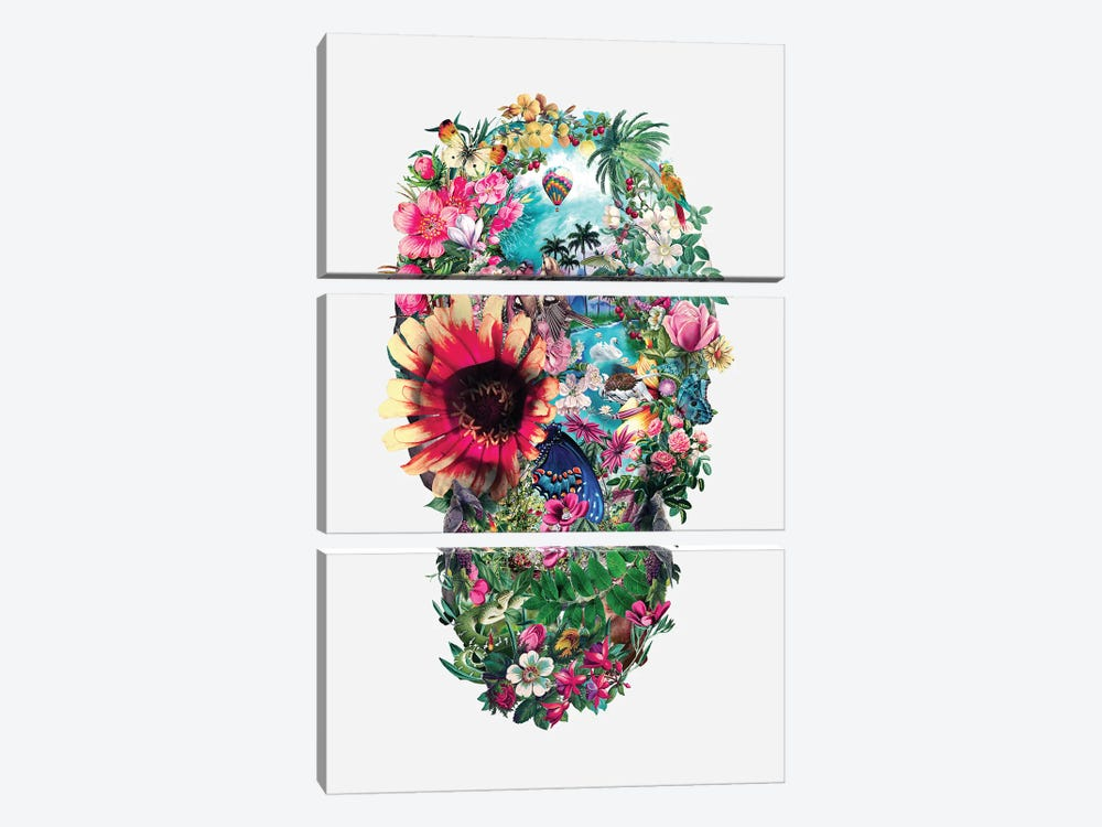 Summer Skull II by Riza Peker 3-piece Canvas Artwork