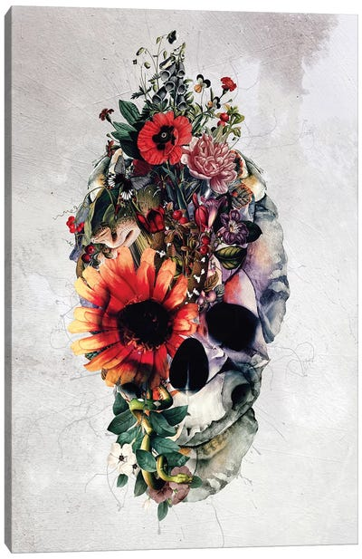 Two Face Skull Canvas Art Print
