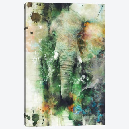 Elephant Canvas Print #PEK7} by Riza Peker Canvas Print