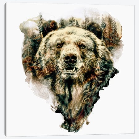 Bear Canvas Print #PEK80} by Riza Peker Canvas Art