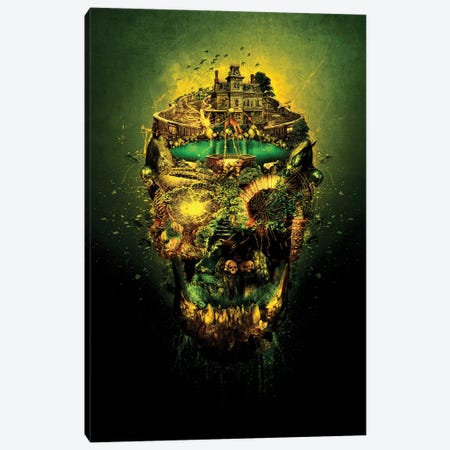 Haunted Skull II Canvas Print #PEK88} by Riza Peker Canvas Artwork