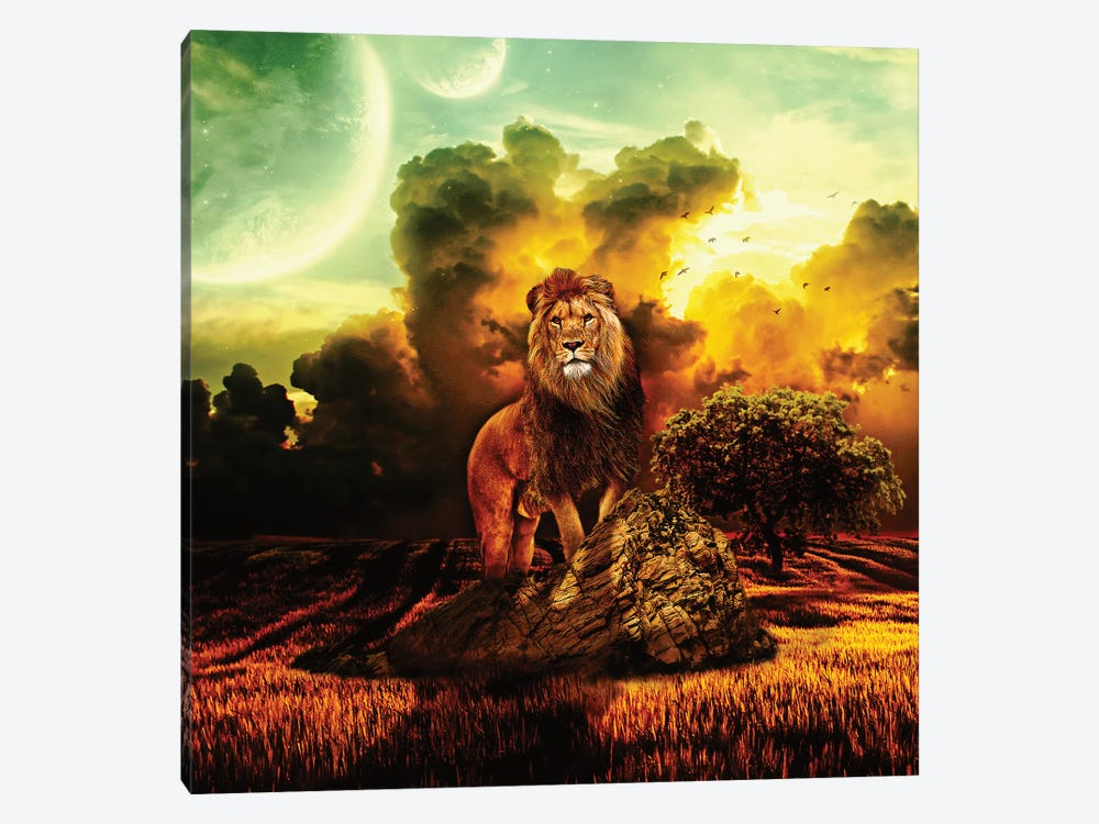 Lion V by Riza Peker 1-piece Canvas Print