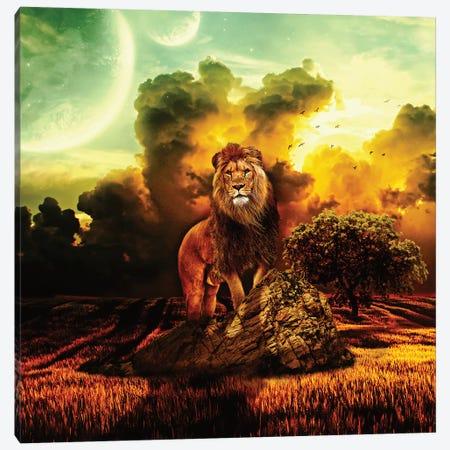 Lion V Canvas Print #PEK91} by Riza Peker Canvas Art Print