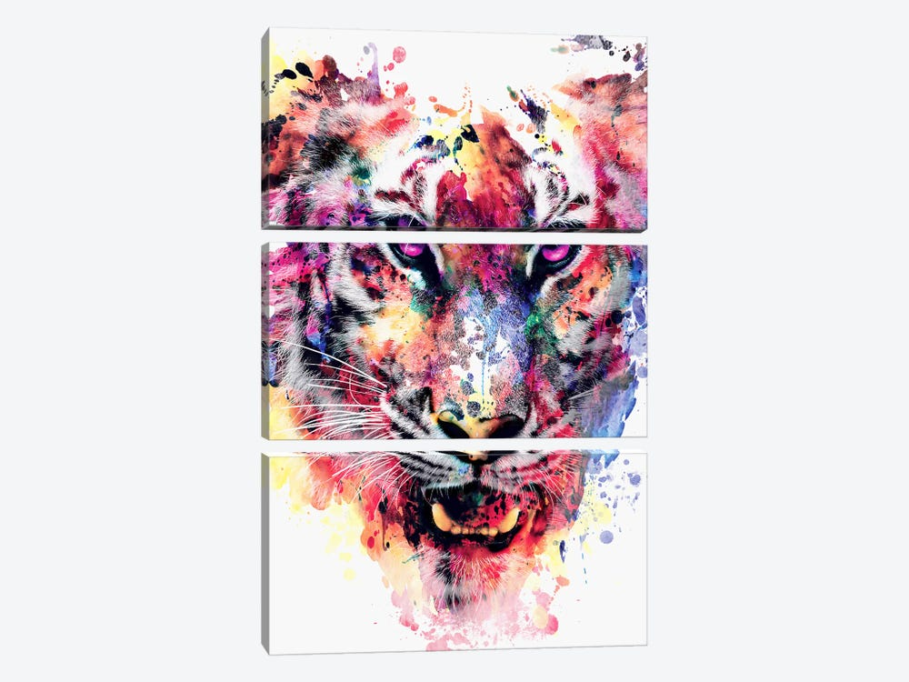 Eye Of The Tiger by Riza Peker 3-piece Canvas Print