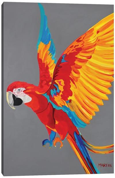 Ara Canvas Art Print