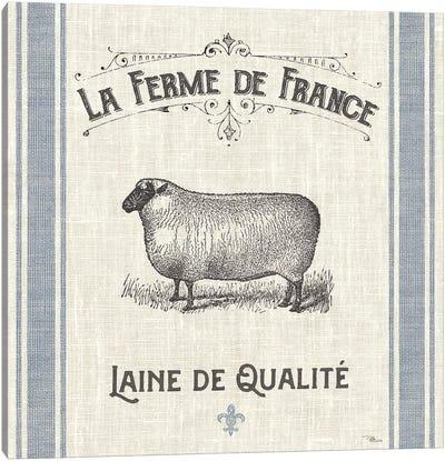 French Farmhouse V Canvas Art Print