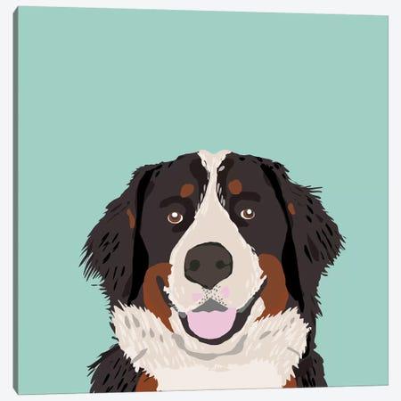 Bernese Mountain Dog Canvas Print #PET10} by Pet Friendly Canvas Art