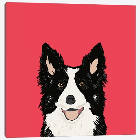Border Collie Canvas Print #PET12} by Pet Friendly Canvas Wall Art