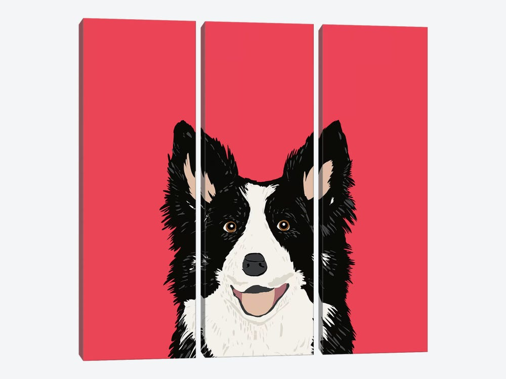 Border Collie by Pet Friendly 3-piece Canvas Print