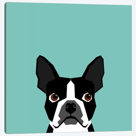 Boston Terrier Canvas Print #PET13} by Pet Friendly Canvas Artwork