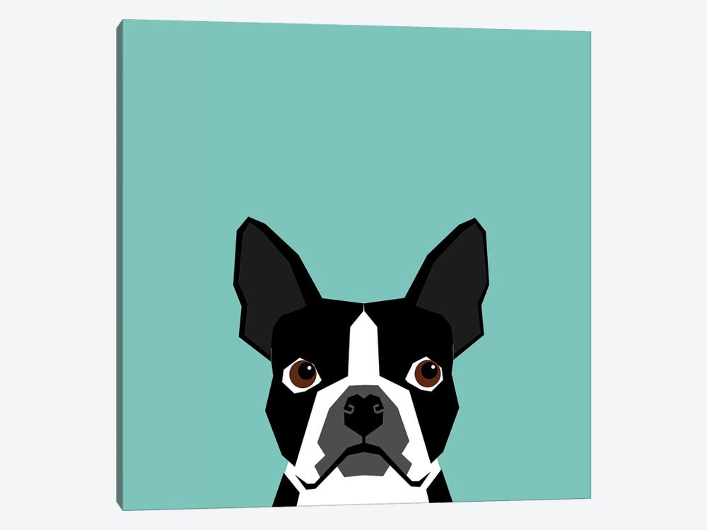 Boston Terrier by Pet Friendly 1-piece Canvas Wall Art
