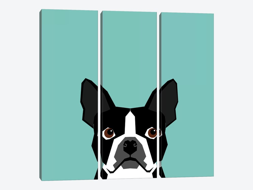Boston Terrier by Pet Friendly 3-piece Canvas Artwork