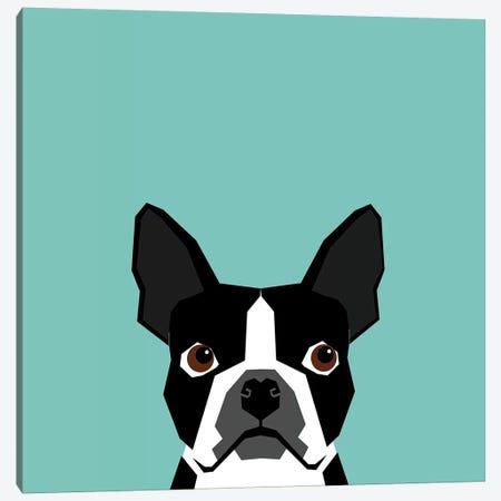 Boston Terrier Canvas Print #PET13} by Pet Friendly Canvas Artwork