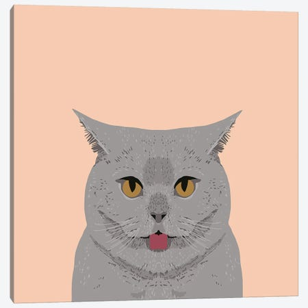 British Shorthair Canvas Print #PET17} by Pet Friendly Art Print