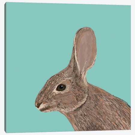 Bunny Canvas Print #PET19} by Pet Friendly Canvas Art